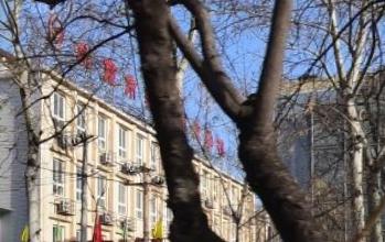 北京实美职业学校(本址)