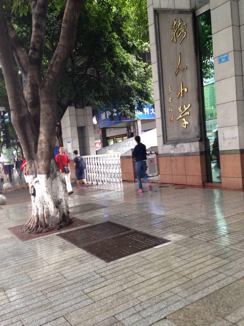 重庆市沙坪坝区树人小学校